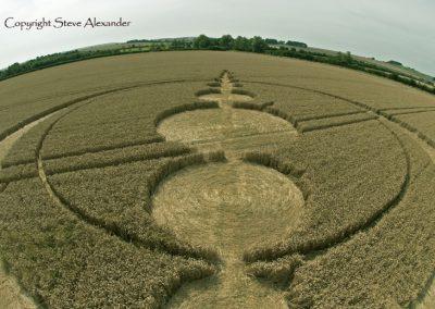 Windmill Hill, Wiltshire | 25th July 2012 | Wheat P
