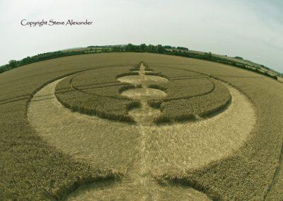 Windmill Hill, Wiltshire | 25th July 2012 | Wheat P2