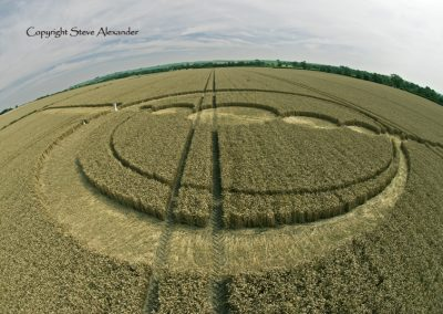 Windmill Hill, Wiltshire | 25th July 2012 | Wheat P3