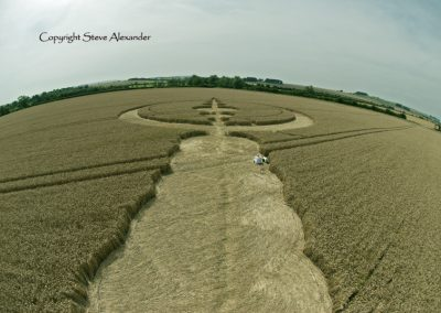 Windmill Hill, Wiltshire | 25th July 2012 | Wheat P5