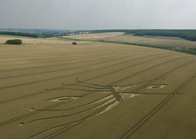 East Kennett, Wiltshire | 26th July 2012 | Wheat L6