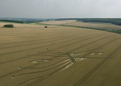 East Kennett, Wiltshire | 26th July 2012 | Wheat L6