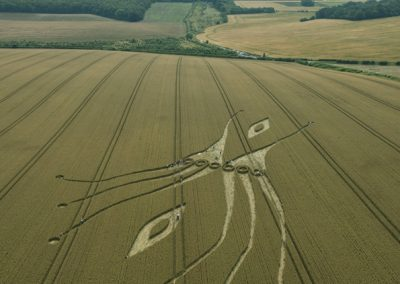 East Kennett, Wiltshire | 26th July 2012 | Wheat L