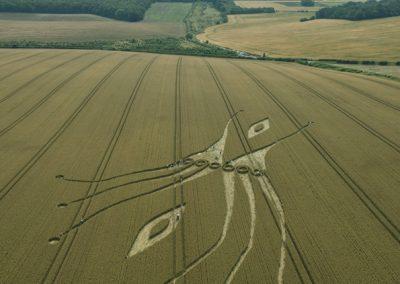 East Kennett, Wiltshire | 26th July 2012 | Wheat L