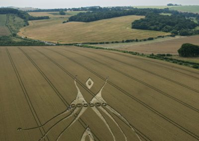 East Kennett, Wiltshire | 26th July 2012 | Wheat L3