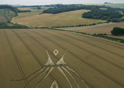 East Kennett, Wiltshire | 26th July 2012 | Wheat L3