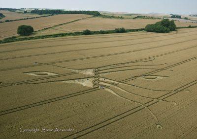 East Kennett, Wiltshire | 26th July 2012 | Wheat L5