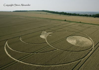Olivers Castle, Wiltshire | 26th July 2012 | Wheat L5