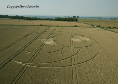 Olivers Castle, Wiltshire | 26th July 2012 | Wheat L3