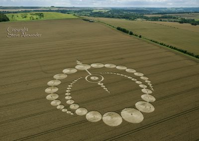Etchilhampton, Wiltshire | 28th July 2012 | Wheat L5