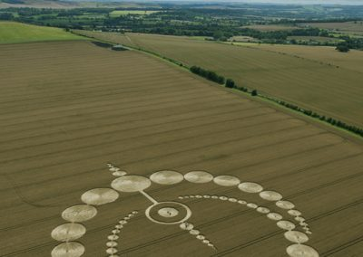 Etchilhampton, Wiltshire | 28th July 2012 | Wheat L6