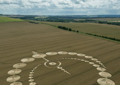 Etchilhampton, Wiltshire | 28th July 2012 | Wheat L3