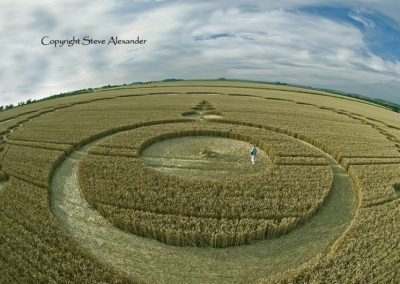 Etchilhampton, Wiltshire | 28th July 2012 | Wheat P3
