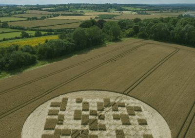Jubilee Copse near Hannington, Wiltshire | 28th July 2012 | Wheat OH3