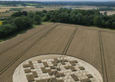 Jubilee Copse near Hannington, Wiltshire | 28th July 2012 | Wheat OH2