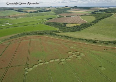 Ogbourne Down, Wiltshire | 29th July 2012 | Linseed L6