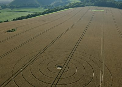 Wootton Rivers, Wiltshire | 2nd August 2012 | Wheat L