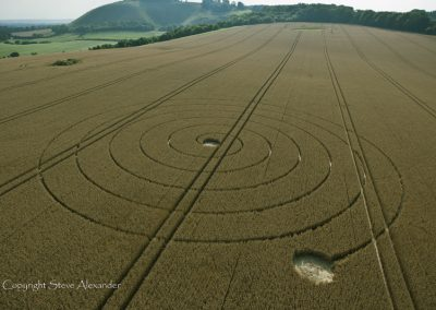 Wootton Rivers, Wiltshire | 2nd August 2012 | Wheat L2