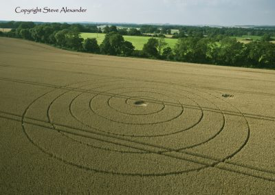 Wootton Rivers, Wiltshire | 2nd August 2012 | Wheat L3