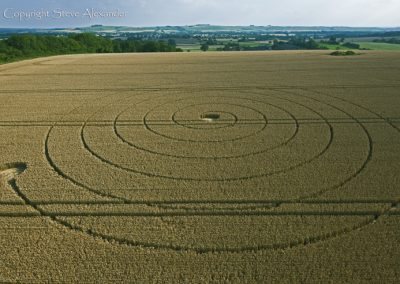 Wootton Rivers, Wiltshire | 2nd August 2012 | Wheat L4