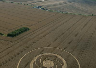 Milk Hill near Stanton St Bernard, Wiltshire | 5th August 2012 | Wheat L
