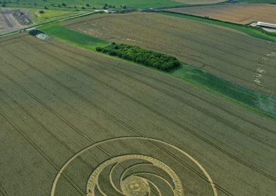 Milk Hill near Stanton St Bernard, Wiltshire | 5th August 2012 | Wheat L2