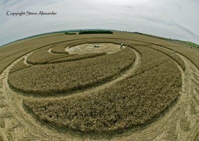Milk Hill near Stanton St Bernard, Wiltshire | 5th August 2012 | Wheat P