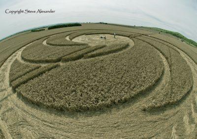 Milk Hill near Stanton St Bernard, Wiltshire | 5th August 2012 | Wheat P2