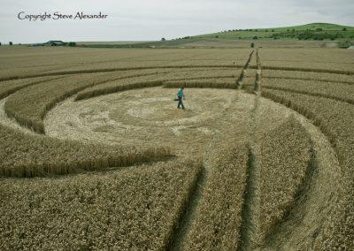Milk Hill near Stanton St Bernard, Wiltshire | 5th August 2012 | Wheat P4