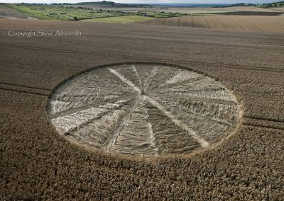 Bishops Cannings near Devizes, Wiltshire | 11th August 2012 | Wheat LOW2