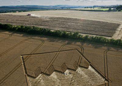 Devils Den near Fyfield, Wiltshire | 12th August 2012 | Wheat L2