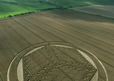Hackpen Hill, Wiltshire | 26th August 2012 | Wheat L