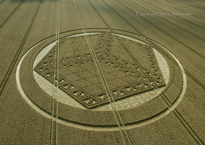 Hackpen Hill, Wiltshire | 26th August 2012 | Wheat L5