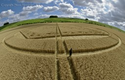 Hackpen Hill, Wiltshire | 26th August 2012 | Wheat P