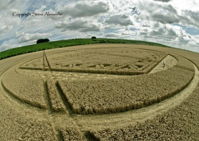Hackpen Hill, Wiltshire | 26th August 2012 | Wheat P8