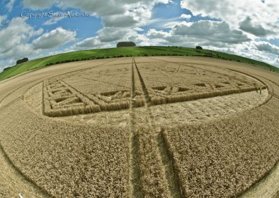 Hackpen Hill, Wiltshire | 26th August 2012 | Wheat P2
