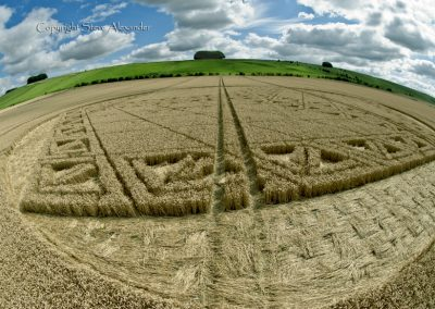 Hackpen Hill, Wiltshire | 26th August 2012 | Wheat P3