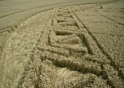 Hackpen Hill, Wiltshire | 26th August 2012 | Wheat P9