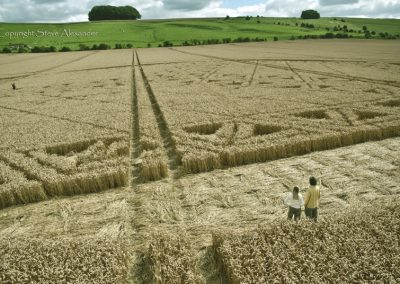 Hackpen Hill, Wiltshire | 26th August 2012 | Wheat P4
