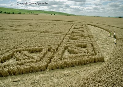 Hackpen Hill, Wiltshire | 26th August 2012 | Wheat P6