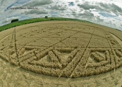 Hackpen Hill, Wiltshire | 26th August 2012 | Wheat P7
