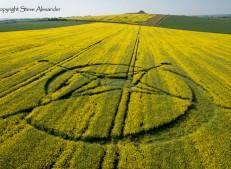 East Field, Alton Barnes, Wiltshire | 2nd June 2013 | Oilseed Rape | LOW