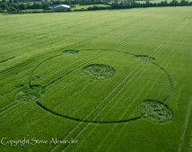 Yatesbury, Wiltshire | 21st June 2013 | Barley L
