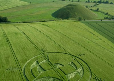 Silbury Hill, Wiltshire | 25th June 2013 | Barley L2