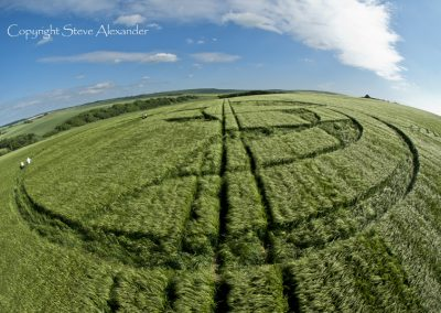 Silbury Hill, Wiltshire | 25th June 2013 | Barley P2