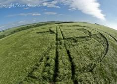 Silbury Hill, Wiltshire | 25th June 2013 | Barley P3
