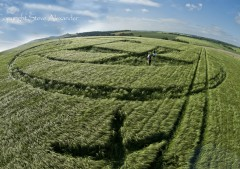 Silbury Hill, Wiltshire | 25th June 2013 | Barley P4