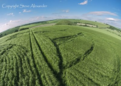 Silbury Hill, Wiltshire | 25th June 2013 | Barley P5