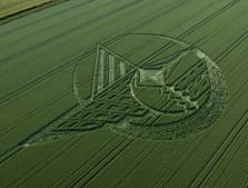 Silbury Hill, Wiltshire | 7th July 2013 | Wheat L2