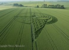 Silbury Hill, Wiltshire | 7th July 2013 | Wheat L3